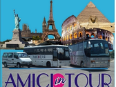 Amici In Tour S.a.s